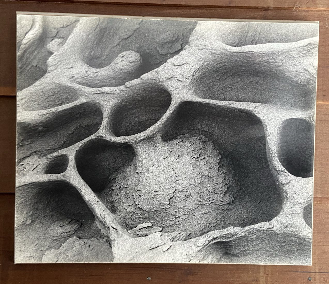 An intricately weathered cave wall